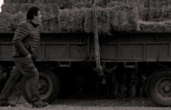 Yo Me Quedo. Carlos - Correos - Contrapunto - WE ARE CP - Guillermo Miranda
