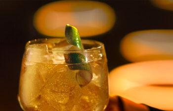 Luz para tu copa - Schweppes - China - Fish Films - Salmon
